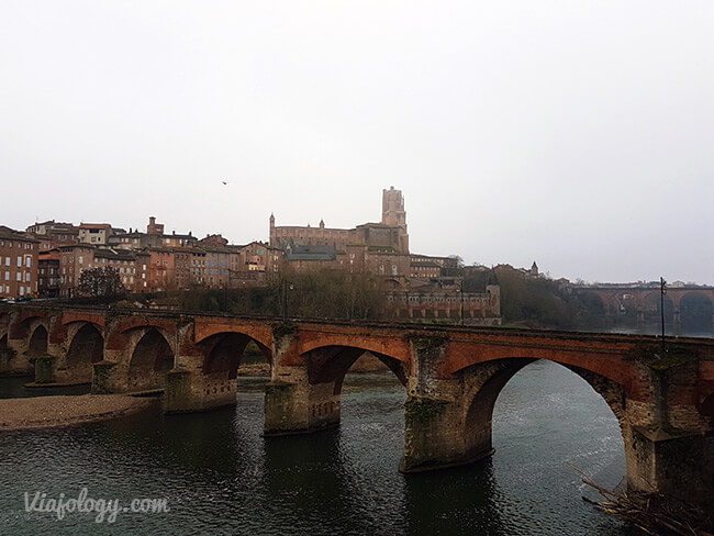 Albi, puente viejo y catedral