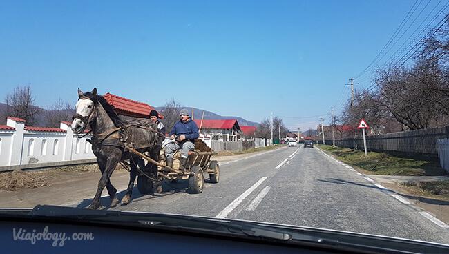 Carros tirados por caballos en las carreteras rumanas