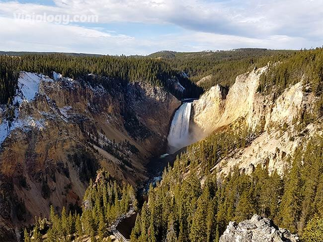 Lower Falls en Canyon Yellowstone