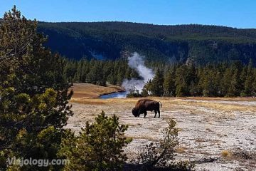 Visitar Yellowstone